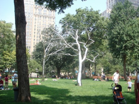 Madison Square Park trees