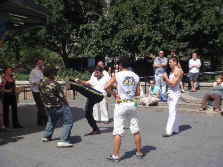 Brazilian martial art2