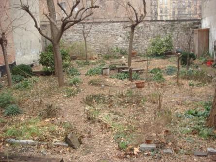 20080106-alberts-garden-03.jpg