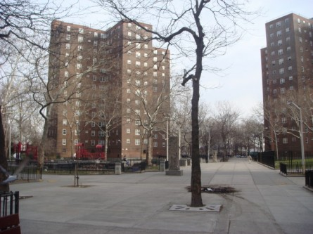 20080113-riis-houses-on-ave-d-03.jpg