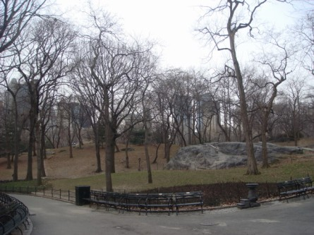 20080126-central-park-in-winter-01.jpg