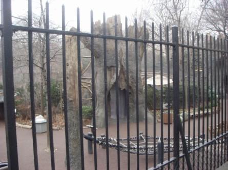 20080126-central-park-zoo-02.jpg