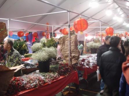 20080202-chinatown-flower-market-08.jpg