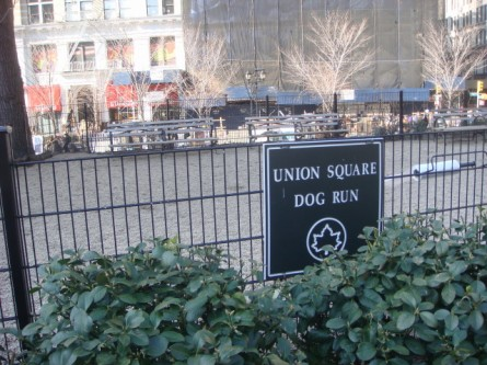 20080203-union-square-dog-run-04.jpg