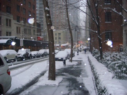 20080222-snowfall-01.jpg