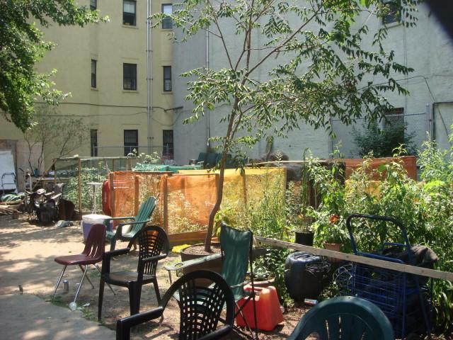 Pleasant Village Community Garden In Spanish Harlem Famous Ankles
